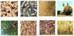 Gasifiers of straw and biomass under the order