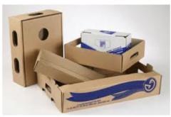 Boxes tare of a gofokarton.