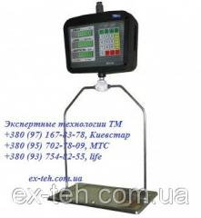 Scales suspended VTA-60/30P-5 to 30 kg.