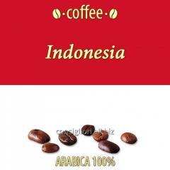Indonesia Robusta (Long Bean) coffee