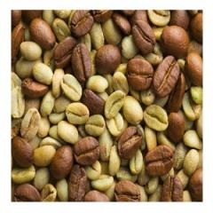 AAA green Zimbabwe coffee