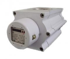 "Газовый счетчик G100 ""Темп"" Dn80 (Dn100) 1/100"