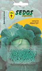 Cabbage Amager (100 drazhirovanny seeds)