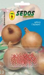 Luk Galangt (200 drazhirovanny seeds)