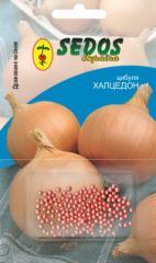 Luk Halqiedong (200 drazhirovanny seeds)