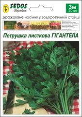 Gigantell's parsley (100 drazhirovanny seeds