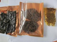 Perga (bread bee) in honeycombs