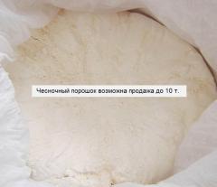 Garlic in powder