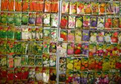 Seeds for vegetable growing