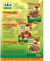 Dried cepes in powder TM of Dara Lesa of 1/10 g