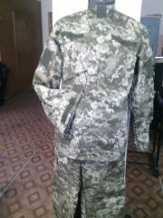 Suit Field Voyenny