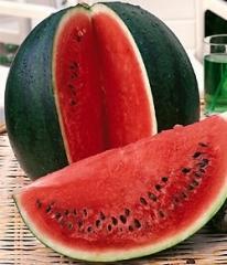 "Water-melon seeds ""Spark"