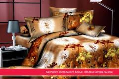 Постельное белье Поляна одуванчиков, 2 спальный