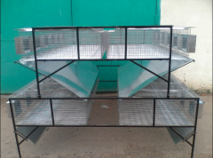 Cage for rabbits of KVO-1