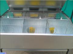Клетка откорма кроликов,  маточная КМВП-3