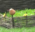Wattled fence, Ukrainian tyn.