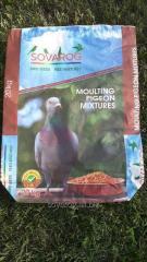 Bird mixtures for pigeon