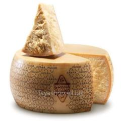 Сир Grana Padano 36/40 Parmigiano chilo prezzo