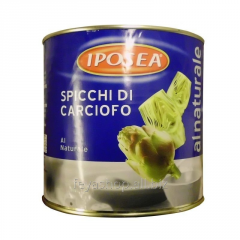 ART_SHOKI R_ZAN_ Carciofi spacatti-IPOSEA In