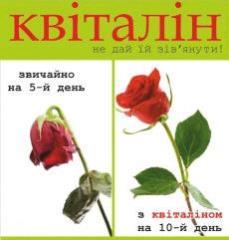 Квиталин (КВІТАЛІН) препарат для продления жизни