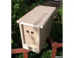 Продажа бджіл бджолопакетів , вуликів