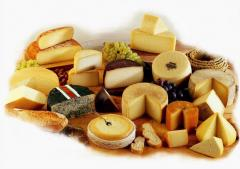 Cheeses swee