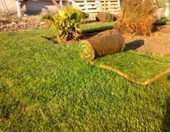 Rolled lawn decorative Agrolux