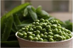 Gotivsky peas