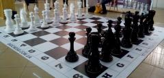 Big, street, park, floor, huge, sculptural chess