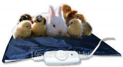 The electrohot-water bottle is waterproof, safe,