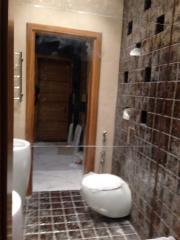 Toilet mirror