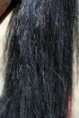 Купівля кінського волосу