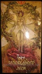 Tarot cards of the Reserved wood 27410603