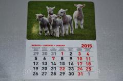 Calendar Goats on a meadow 53835593