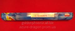 Feng shui goods of Nag champa 31866802
