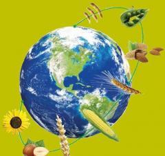 Winter wheat, Summer barley, Oats, Millet, Corn,