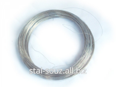 Wire qualitative spring f 0,3 GOST 9389-75 2 of C