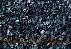 Alder charcoal