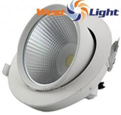 20 W LED lamps Sliding Rotary Downlight WL1408820