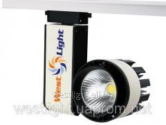 Track searchlight 30W Led WL10012620