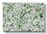 Liquid wall-paper COPY ORIENTAL COAT (Japan) — the