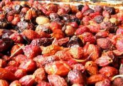 Berries dried, Berries dried cheap wholesale,