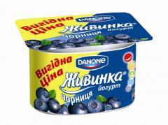 Zhivink's yogur