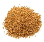 Горчица семена