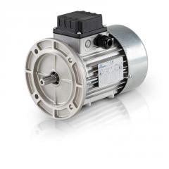 Electric motors common industrial Motovario, Drive