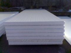 Sandwich panel of 100 mm. (PPS)