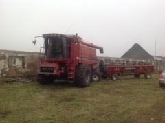 Уборка зерновых( ранее зерновые, семечка,