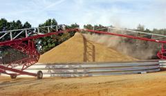 Conveyors for grain