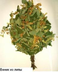 Broom from a linden for a bath