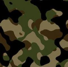 Ткани для спецодежды, ткани для военной одежды